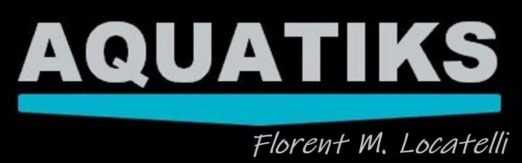 Logo Aquatiks web signé
